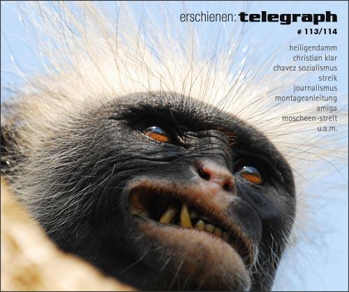 telegraph113.jpg